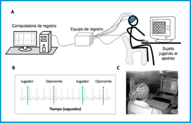 (Fig.21) Màquines que mesuren la freqüència cardíaca durant una partida.